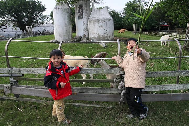 吳厝楊家莊農場(正隆休閒農場)018