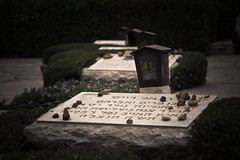 Laid To Rest, Mt. Herzl