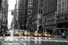 Yellow Cabs Version 2 (Sarah Marston) Tags: road bw usa newyork cars yellow america crossing taxi january headlights only meter cabs selectivecolour 2011 yellowcabs