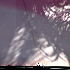 (SteffenTuck) Tags: morning pink light white awning outside shadows exterior brisbane edge vegetation canopy steffentuck