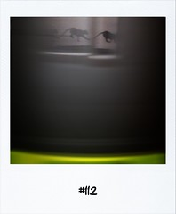 """#DailyPolaroid of 19-1-12 #112 • <a style=""""font-size:0.8em;"""" href=""""http://www.flickr.com/photos/47939785@N05/6744789341/"""" target=""""_blank"""">View on Flickr</a>"""