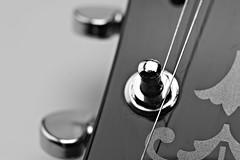 Yamaha Produkt 3 (julianpache) Tags: julian anchor products pariah langenfeld produkt pache a of produktfotografie
