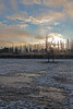 Winter morning sun flare (Ivan Naurholm. thanks, for more than 500.000 views) Tags: morning trees winter sky sun sunlight snow ice clouds copenhagen denmark frozen frost bluesky flare silhouet nwn ginordicjan12