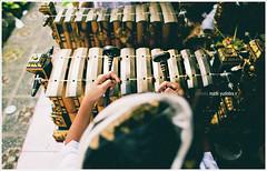 Together in Harmony - Reuploaded (Bali Based Freelance Photographer and Photo Stocks) Tags: from boy bali music playing kids canon indonesia eos traditional culture made musical instrument tradition ensemble gamelan yudistira madeyudistira alatmusic myudistiraphotography