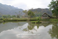 Maichau mountains-hoa binh mountains - www.vietnampathfinder.com - (8) (Vietnam Pathfinder Travel) Tags: maichau vietnammaichau maichauvietnam maichautours