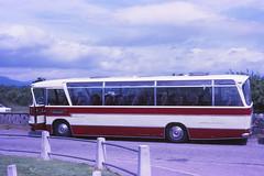 Newtons MVA983F Muir of Ord (Guy Arab UF) Tags: bus ford buses coach s m viceroy newton rossshire muiroford duple r226 mva983f