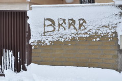 Brrr (Starlightworld) Tags: snow cold roma freezing neve brrr nevica nevearoma inrome starlightworld butsobeautiful 04022012