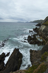 Dingle Coast (albinobobman) Tags: ocean ireland water outdoors rocks coastline