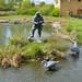 London Wetland Centre_2