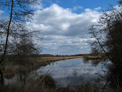 Friesland-29