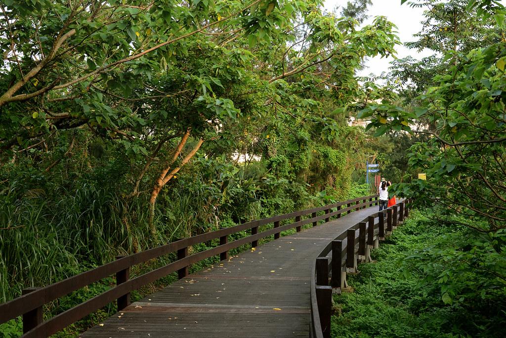 三芝 麟山鼻步道