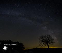 ViaLacteaCapolat (EugenioJB) Tags: naturaleza contraluz arbol noche luna amanecer cielo panoramica nocturna ganado cielos montaa nocturnas anochecer nuves largaexposicion vialactea capolat