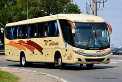 1252 (American Bus Pics) Tags: tel telturismo