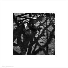 Gate Shadows (Ian Bramham) Tags: photo gate shadows manmade stile ianbramham