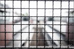2016-05-16_Berlin_IMG_7552 (dieter_weinelt) Tags: family sunlight berlin familie sightseeing ubahn sbahn visiting pape tourismus sonnenschein pfingsten albrecht bunkerfhrung weinelt untergrundev