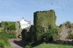 Tenby-Castle+Museum-196b (M H Evans) Tags: tower castle museum gallery ivy pembrokeshire tenby