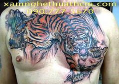 TATTOO - XAM NGHE THUAT-XAM MINH-HINH XAM NGHE THUAT-MAU HINH XAM-XAM 3D-XAM TRO (12) (hinhxamdep) Tags: tattoo xamminh xamnghethuat mauhinhxam xamtro hinhxamnghethuat
