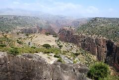 Dixam canyon (Gerry & Bonni) Tags: tree island canyon yemen dragonblood socotra soqotra dixam