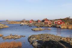 Ut-Fredeln (Anders Sellin) Tags: autumn sea sweden stockholm baltic sverige höst archipelago skärgård stora klippor bodar fredlarna skära vånskär utskärgård utfredeln storavånskär ginordicnov utfredlarna ytfredeln