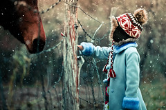 Touch (Standard Deluxe) Tags: autumn horse snow fence child 100mm littlegirl wirefence canonef100mmf28lisusm 10028lis