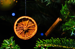 Xmas Art (Alexandre Moreau | Photography) Tags: christmas xmas orange tree art texture closeup cinnamon christmassy strobist alexandremoreau