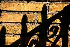 il senso del muro (duegnazio) Tags: muro canon ombra vivid cancello mattoni 40d