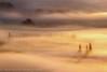 A Sea Of Mist 2 (ⓃⒾⒸⓀ ⓅⓄⓊⓃⒹ) Tags: mist fog sunrise dawn somerset levels ostrellina