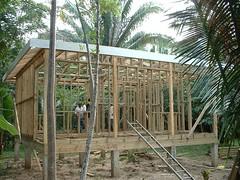 Detatched Cottage Construction (Dis da fi we) Tags: puntagorda toledodistrict belize toledo hickateebelize hickateepuntagorda jungle rainforest forest wildlife culture cottages hickatee