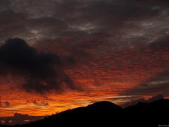 (saro vet) Tags: tramonto olympus sicilia veterinarifotografi rosariomoscato oliympuse410