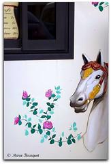 Cheval peint sur un mange (bleumarie (+ de 3 000 000 vues. Merci !)) Tags: fleur rose cheval fuji peinture collioure roussillon mange dcoration tourisme carrousel mditerrane catalogne pyrnesorientales suddelafrance bleumarie mariebousquet perlecatalane photomariebousquet