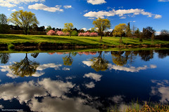 Bombala River Reflections - Bombala, NSW (Black Diamond Images) Tags: reflection reflections river landscape landscapes australia explore nsw bombala cloudreflections bombalariver