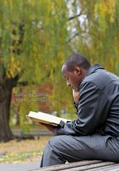 نقرأ لنرتقي (Zaina Al-Sanea) Tags: park reading book zaina alsane alsanea