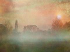 Autumn haze (virtually_supine) Tags: uk autumn light mist painterly blur colour fall sunrise landscape haze artistic manipulation textures oxford layers grainy impressionist tistheseason botley vividimagination botleypark theawardtree tatot magicunicornverybest pse9