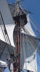 HMB Endeavour (Figgles1) Tags: world square video sailing ship ships bark rig championships fremantle westernaustralia sailingship hmb endeavour isaf hmbendeavour 00063new