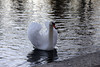 Al llac (travel feelings) Tags: france frança desembre 2011 osseja oceja