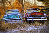 Brothers All Are We (James Neeley) Tags: peace brothers decay newyear idaho sidebyside oldcars hdr 5xp jamesneeley flickr24 ruralidaho