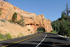 Red Canyon (elgalopino) Tags: red usa paisajes naturaleza nature landscapes utah us ut nikon united canyon states paysages unis estados route12 unidos hwy12 etats ruta12 d3s elgalopino