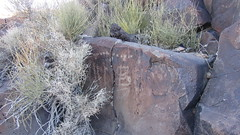 Petroglyphs at Surprise Tank - 4820