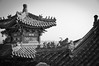 Top of the Roofs (Juergen Jauth) Tags: china city roof detail nikon symbol beijing stadt summerpalace dach figures peking figuren chinesisch chineese d90 sommerpalast klassisch