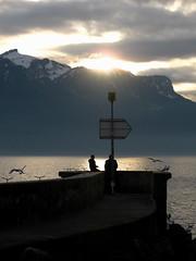 first sunset (overthemoon) Tags: sunset people lake birds sign clouds marina gold grey schweiz switzerland pier twilight suisse dusk gulls father gray son arrow svizzera léman vevey vaud romandie entredeuxvilles imagepoésie