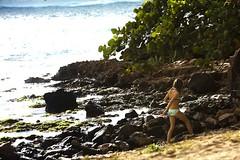 Hawaii2-8