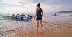2012 George Bass Surfboat Marathon - part 9 (screenstreet) Tags: marathon narooma surfboat colorefexpro georgebasssurfboatmarathon