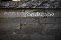 NaturalLandscape2011Fall-209 (Natural Landscape Inc.) Tags: pool landscape waterfall backyard estate furniture stonewall waterfeature screens stucco naturalstone splashpad entertainmentarea loungingarea andscapearchitecture pooljets sheeringwaterfalldecent stonevener hottubspilloutnaturalcoping