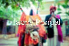 Happy Pongal (cishore) Tags: india team kites hyderabad cishore kishore sankranti makar hws nagarigari happypongal festivalofkites wwwkishorencom 5dmk2 teamhws