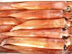 tsukiji squid (carrenb77) Tags: red squid tsukiji fishmarket slimy carrenbarlow carrenb