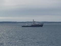 NLV Pharos (divnic) Tags: ferry boat ship ships number imo stena irishsea northernlighthouseboard nlb rollonrolloff lighthousetender nlvpharos ropaxferry belfasttobirkenhead 9338606 stenamersey birkenheadtobelfast cantierenavalevisentini 9329851 stoczniaremontowasa remontowasa imo9338606 gnlb