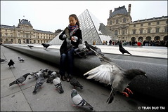 8MM PROJECT - GIRL AND BIRDS 4 (Tran Duc Tai) Tags: travel portrait paris france bird girl museum canon eos feeding louvre citylife documentary sigma tourist vietnam 7d dailylife 8mm ultrawide royalpalace extremewide 816mm tranductai