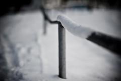 White #26/365 (A. Aleksandraviius) Tags: winter snow nikon dof f14 85mm mc if 365 85 ae umc 26365 project365 samyang 365days d700 nikond700 samyang85mmf14 samyang85 samyangae85mmf14ifmc 36520122