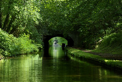 Shropshire union canal (lovestruck.) Tags: uk bridge trees summer england reflection green geotagged countryside shropshireunioncanal narrowboats 2011 challengeyouwinner staffsworcscanal geo:lat=5267192685256182 geo:lon=2174753723754975