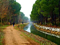 El Paseo (Jesus_l) Tags: espaa agua europa valladolid provincia reflexions canales jesusl blinkagain